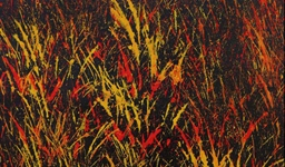 Burning Grass (08101277)